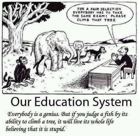 education_fairness